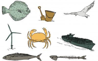 Illustraties en webdesign voor Fish & Farm
