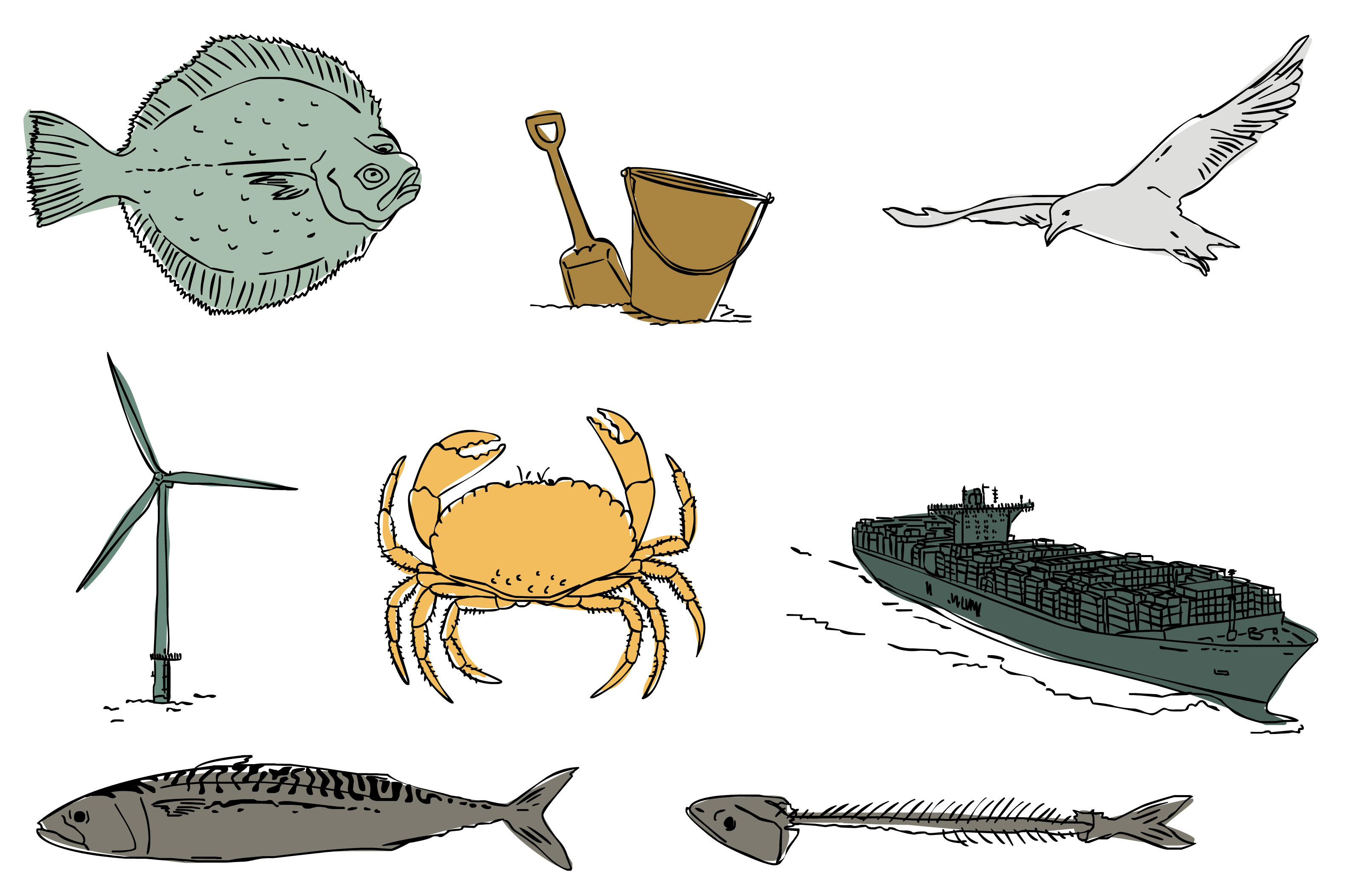 2015-09-10 Fish and Farm illustraties en website