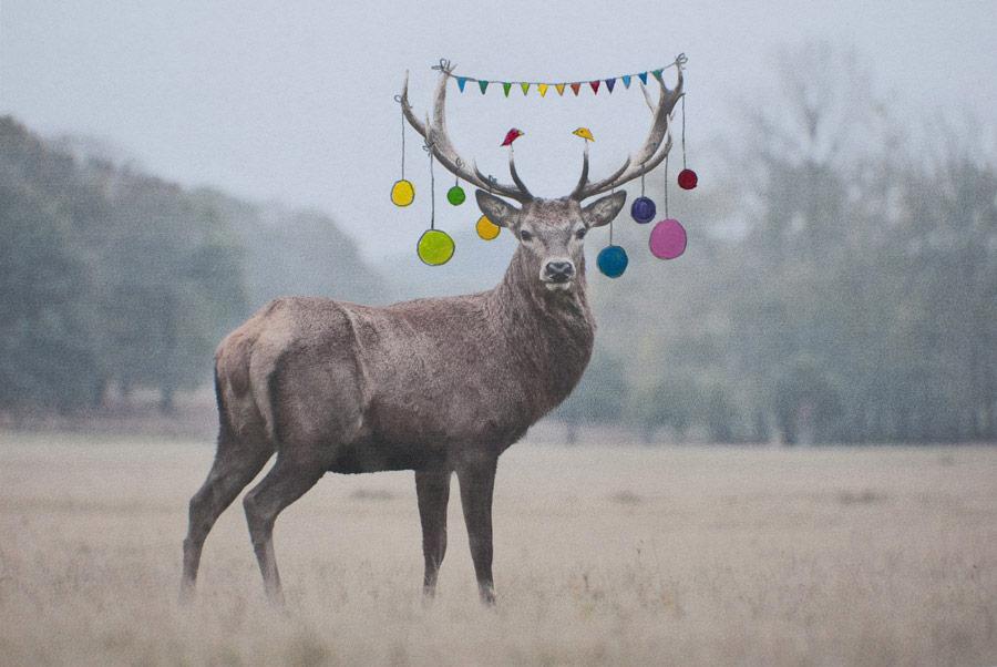 2015-12-24 Fijne kerst